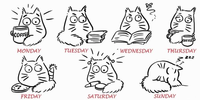 Учим названия дней недели на английском
